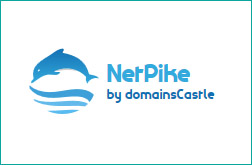 netpike.com - domain name for sale by domainsCastle.com