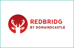 redbridg.com - domain name for sale by domainsCastle.com